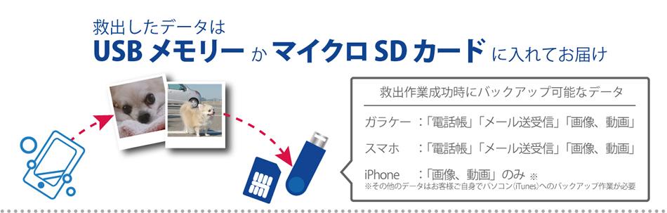 データはUSBメモリーかマイクロSDカードでお届けします